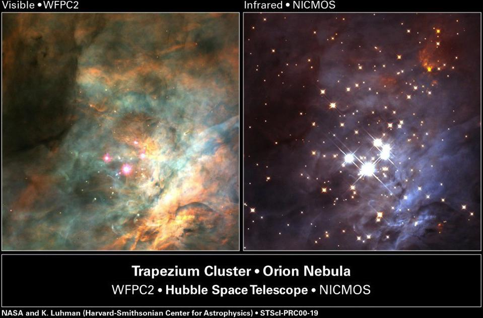 A star-forming region: the Trapezium Cluster inside the Orion Nebula.