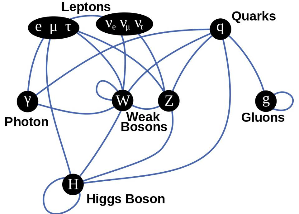 Particles of the Standard Model, as linked by their couplings to other particles.