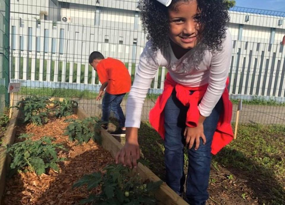 Kids can help tend the community gardens established as part of a new nutrition program launched by UNICEF USA in partnership with the Boys & Girls Clubs of Puerto Rico. The gardens will help keep fresh fruit and vegetables on the menu.