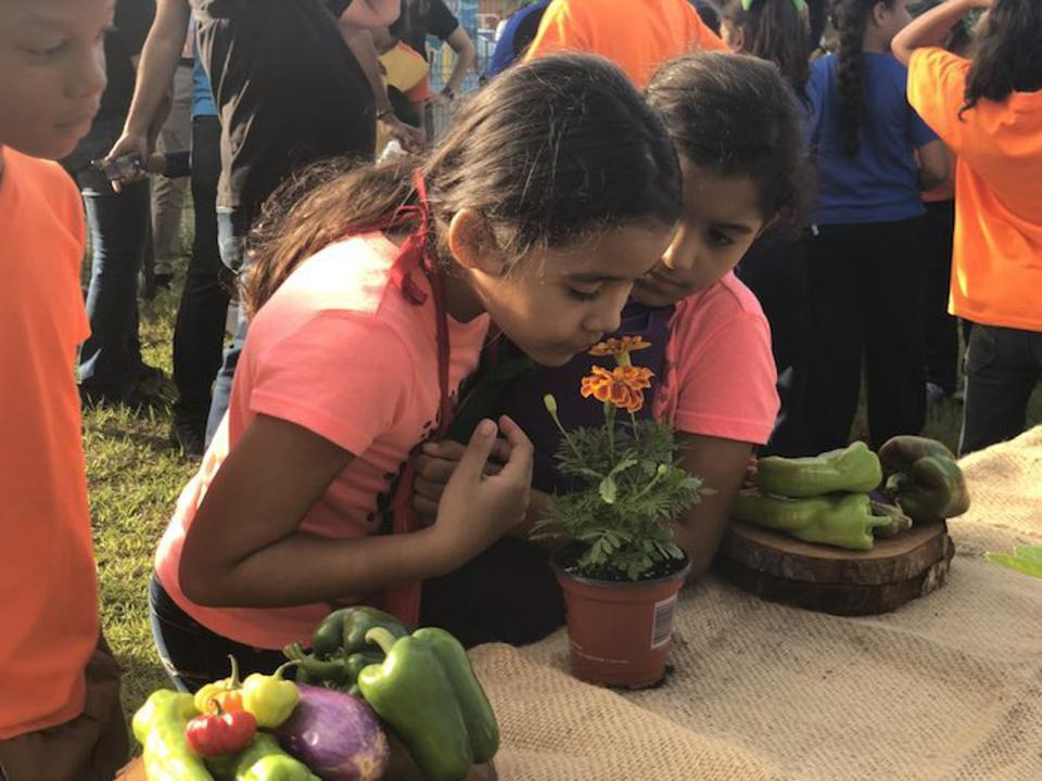 UNICEF USA partnered with the Boys & Girls Club of Puerto Rico to launch a nutrition program that will feed a total of 1,700 children every day for the next year.