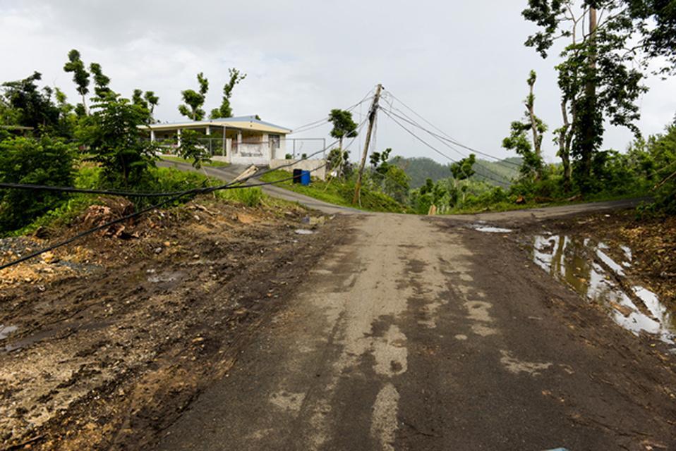 A hurricane-ravaged neighborhood in Puerto Rico.
