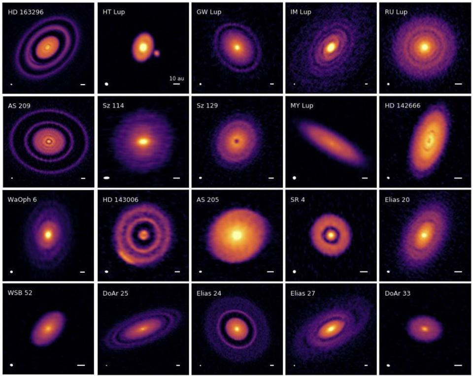 20 new protoplanetary disks, as imaged by the DSHARP collaboration.
