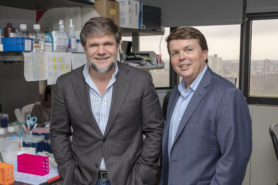 Julio Aguirre-Ghiso, scientific founder of HiberCell, and cofounder, president and chief scientific officer Alan Rigby.