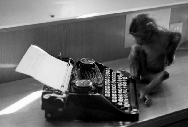 What Can One Million Monkeys Teach Us About Digital Networks?