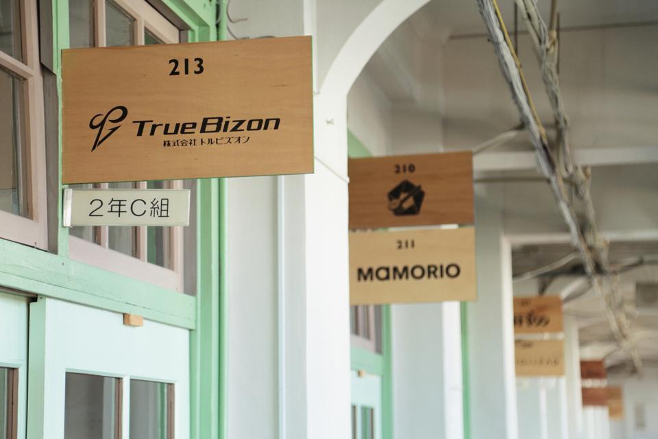 TrueBizon, Mamorio