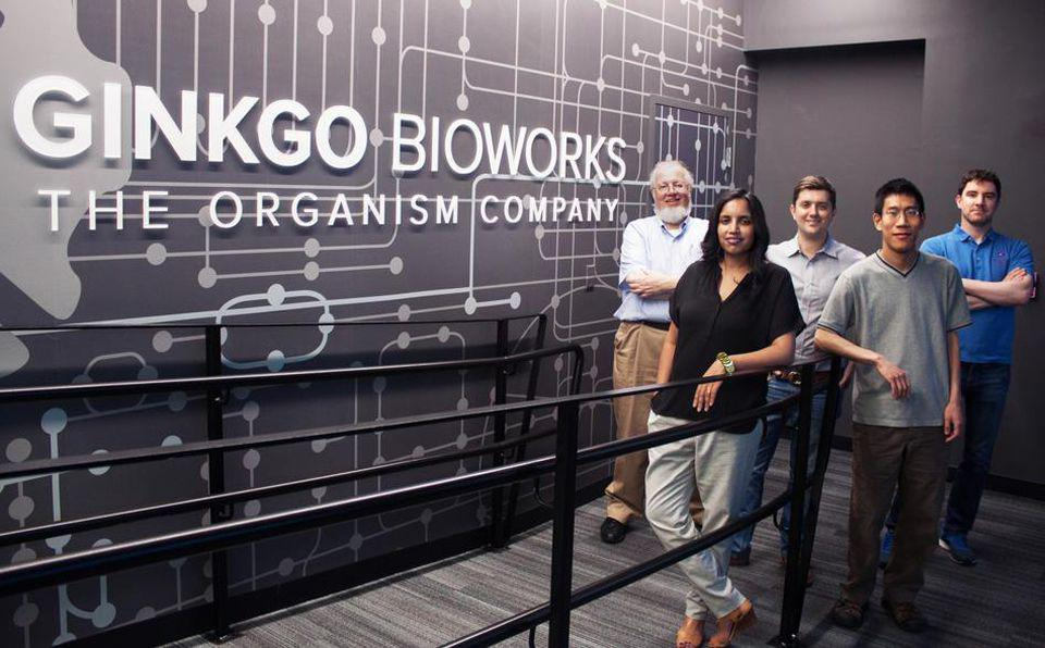 Ginkgo Bioworks, gene hacking, synthetic biology, thereapeutics, Boston startups