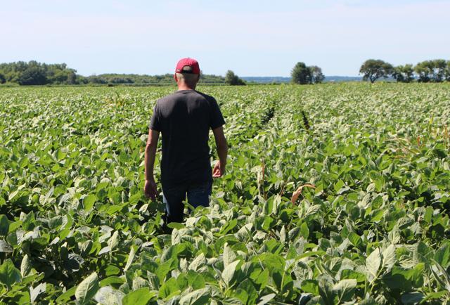 Farmers—A Key Trump Demographic—Get $16 Billion In Aid Amid Trade Fallout