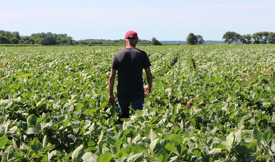 US-CHINA-TRADE-TARIFF-POLITICS-FARMS