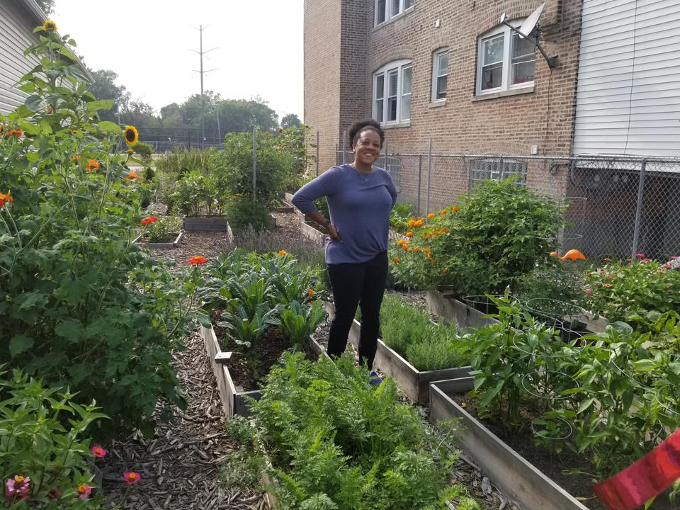 Marlene Fisher's hobby has become a thriving organic garden in Chicago, providing food to neighbors and friends, and a habitat for bees and insects.
