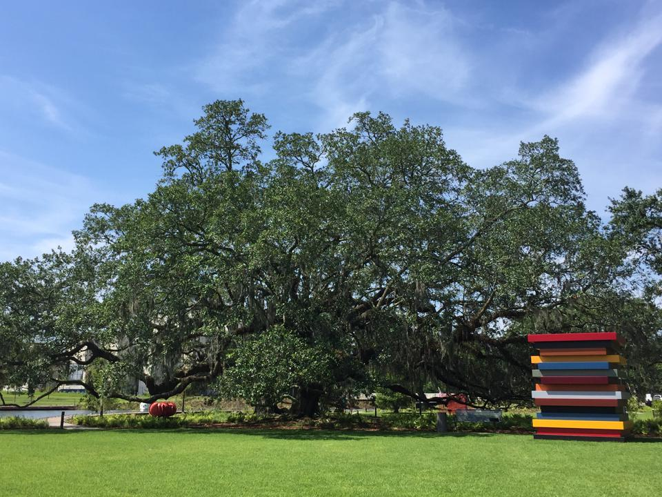 Sean Scully, Colored Stacked Frames, 2017 beside a live oak tree in New Orleans Museum of Art's expanded Sydney and Walda Besthoff Sculpture Garden. Stainless steel with automotive paint.