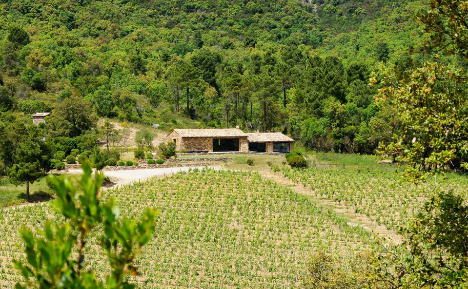 rosè, sustainable wine, Provence lifestyle