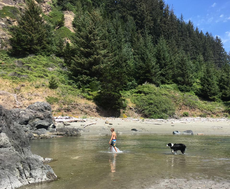 Many stops along Oregon's southern coastline feature diverse terrain in a small area.