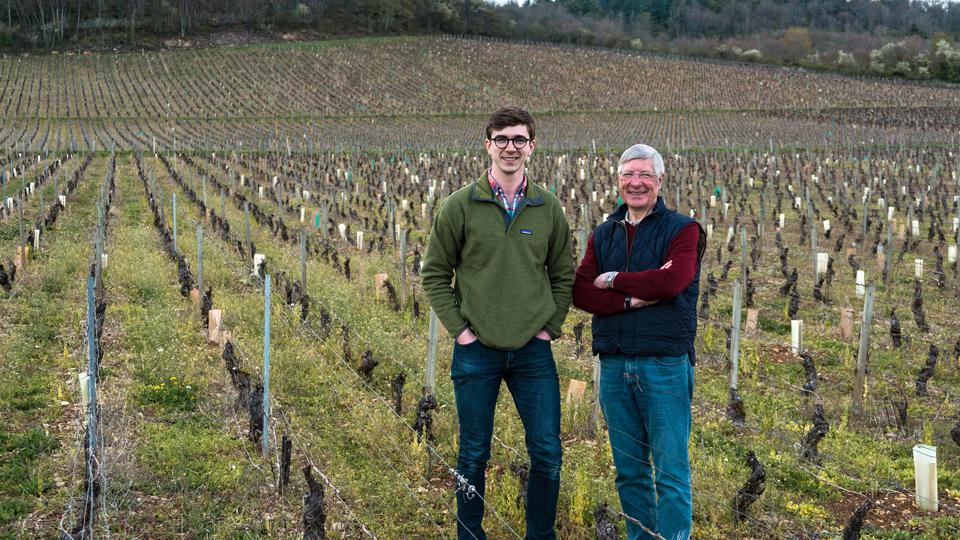 importing French wine, where to buy French wine