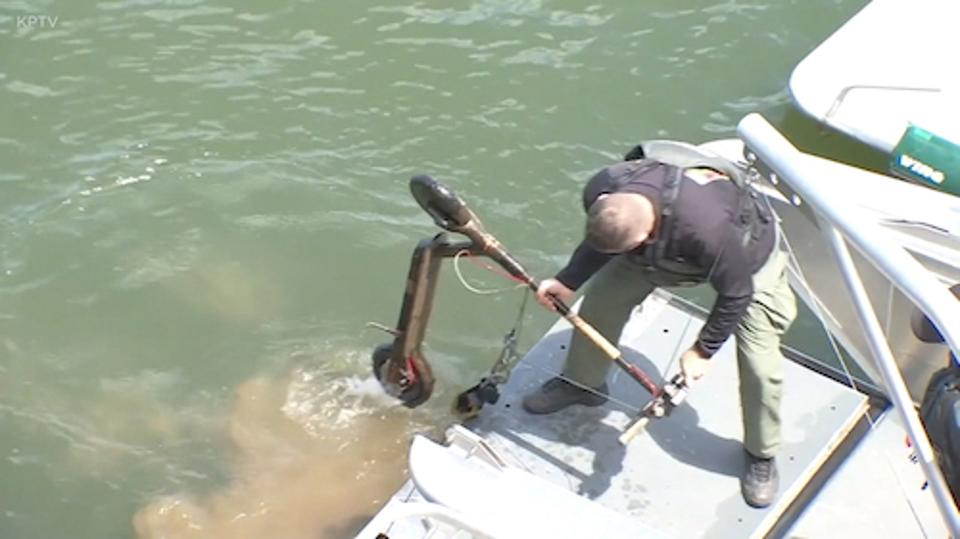 Fishing scooters out of the river in Portland