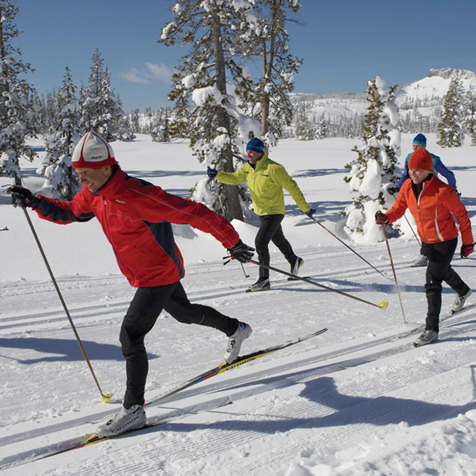 Cross country skiers on  trail at Royal Gorge resort.