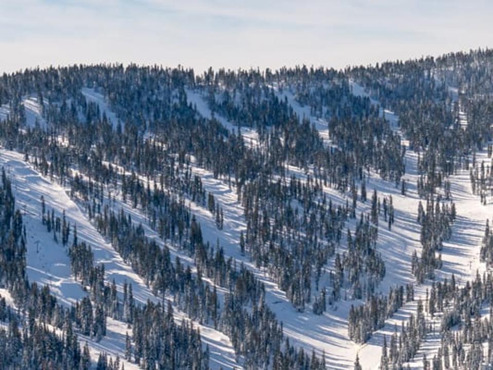 Glade skiing is very popular at Northstar California resort.