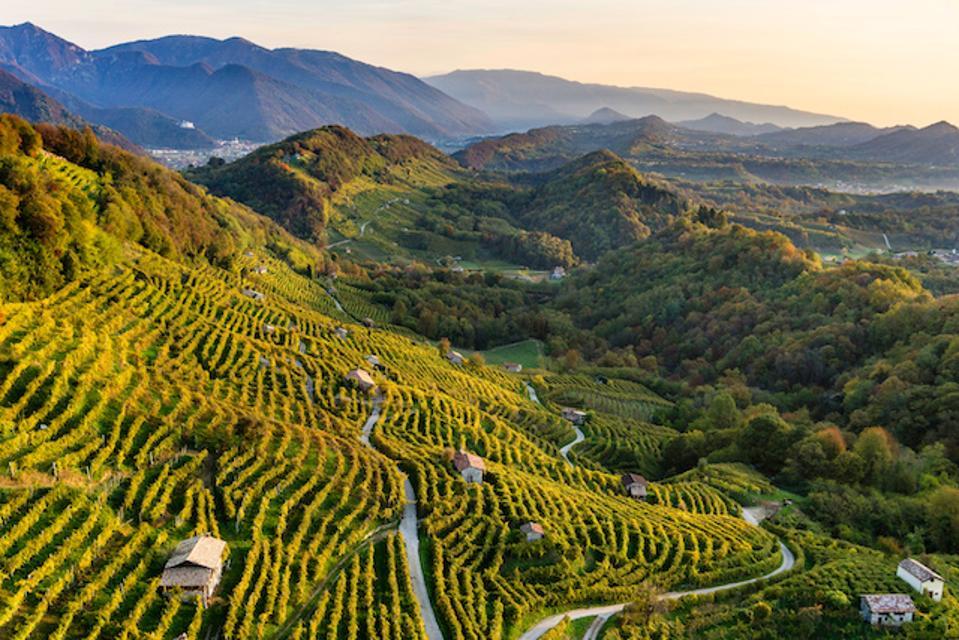 Conegliano Valdobbiadene Hills