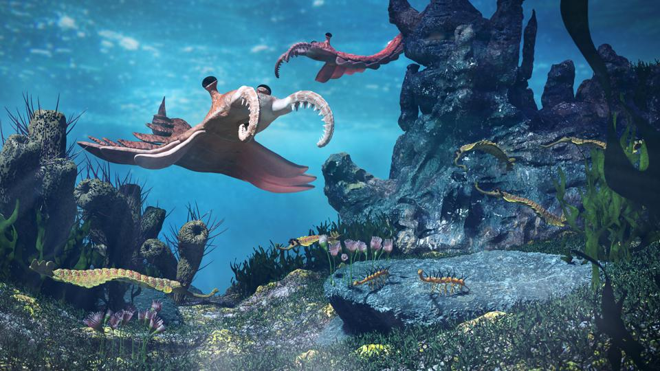 creatures of the Cambrian period, underwater scene with Anomalocaris, Opabinia, Hallucigenia, Pirania and Dinomischus (3d science illustration)