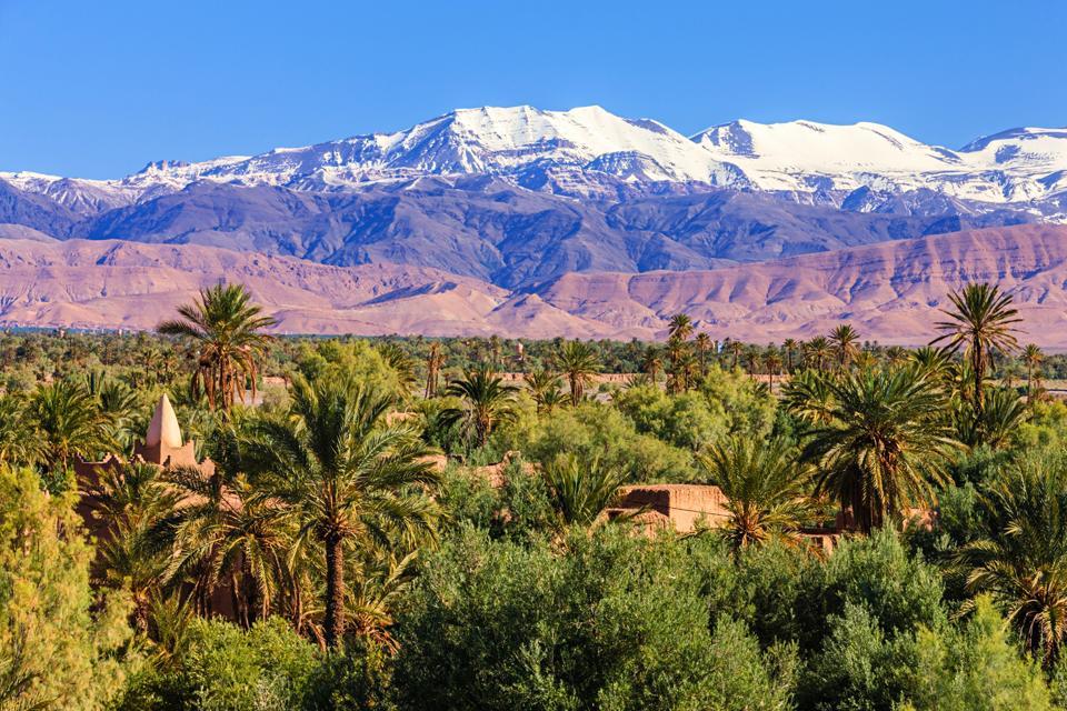 Moroccan oasis and High Atlas mountain range