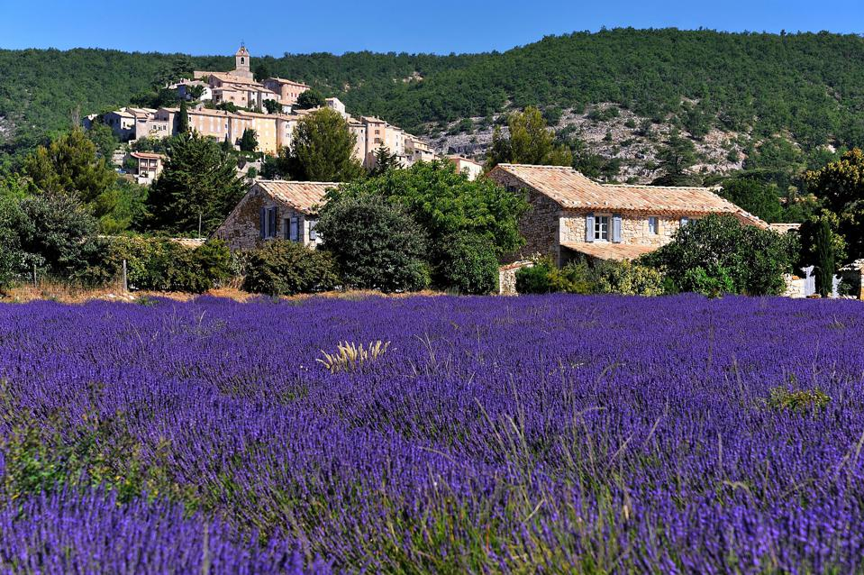 Provence with Odysseys Unlimited