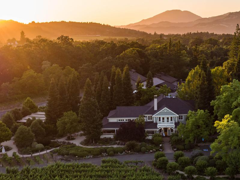 Merlot In Napa Valley - Will It Ever Be Taken As Seriously As Cabernet Sauvignon?
