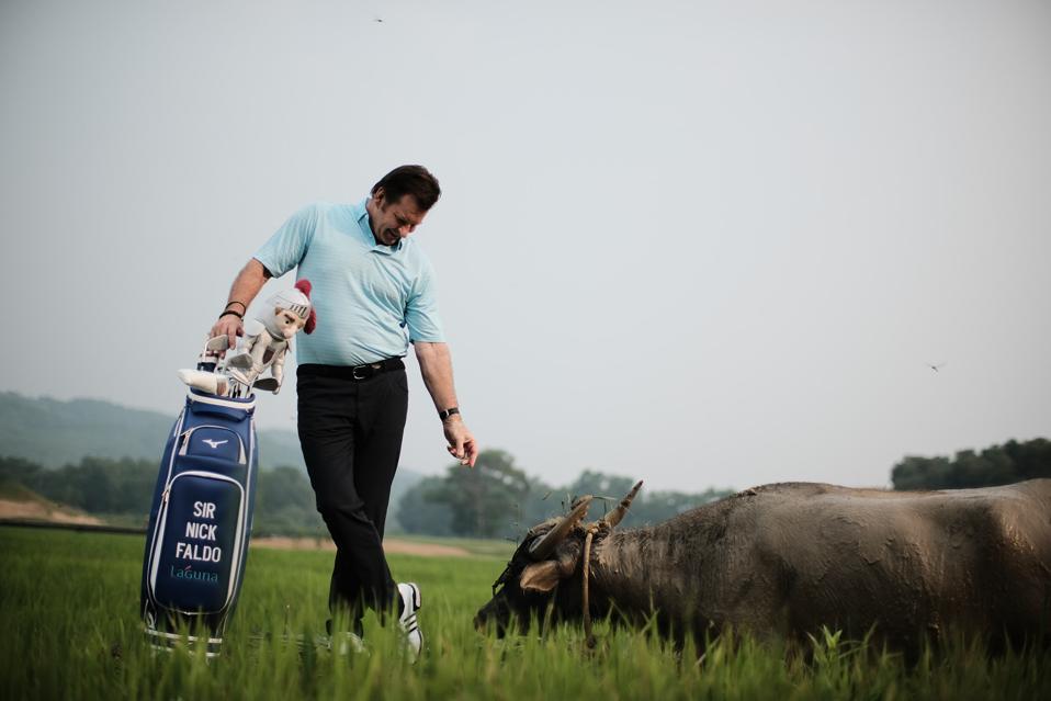 Golfer an water buffalo