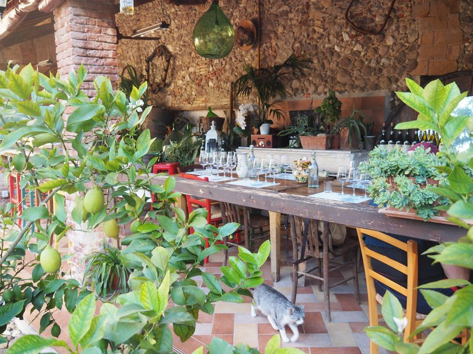 Table set with Chiaretto