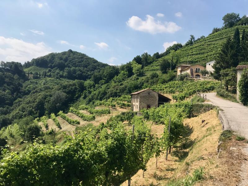 Impeccable Italy: The Prosecco Region