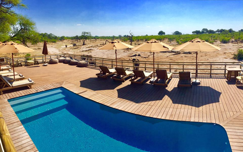 Belmond Savute Elephant Lodge -alueen uima-altaan reunalla