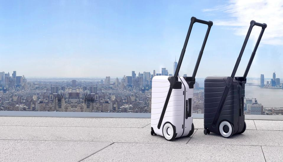 Two suitcases in front of a skyline