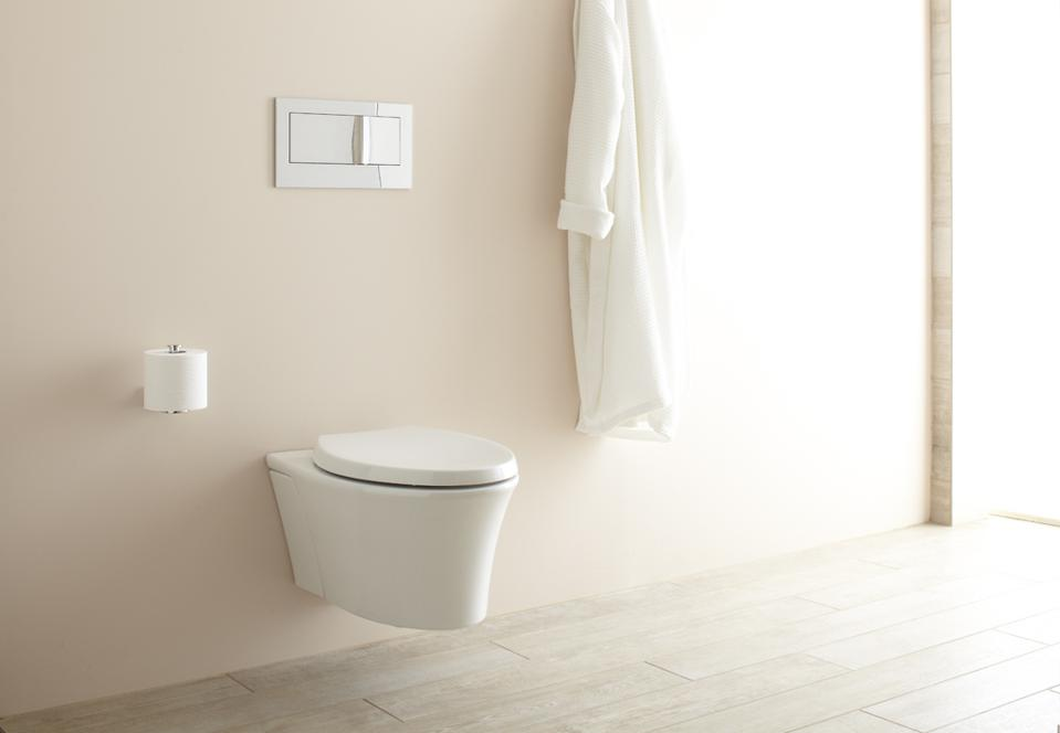 This is the Veil model from Kohler which is sold in two parts, the wall hung toilet and the carrier/tank.