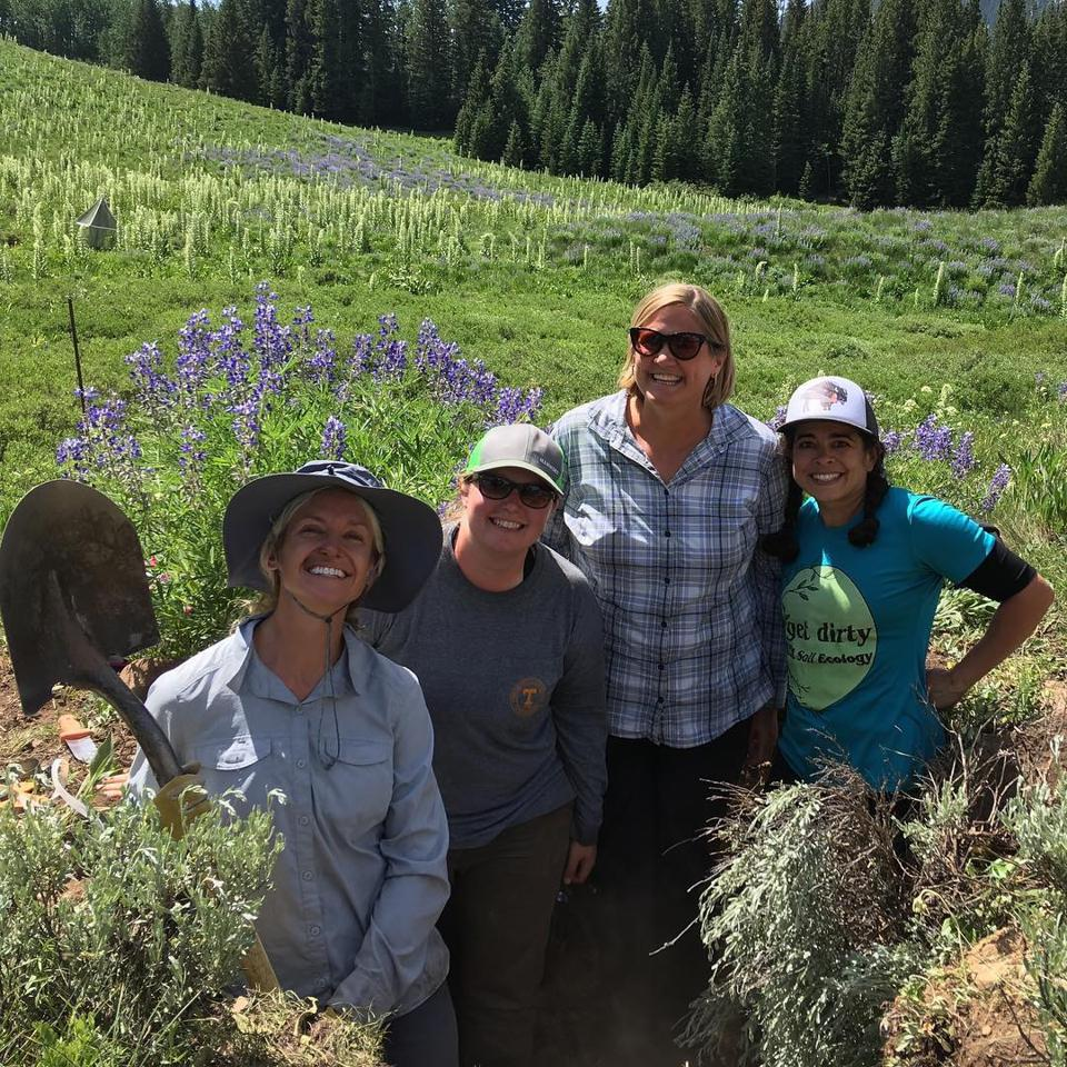 Four women scientists in the trench dug to analyze soil at the warming meadows experiment
