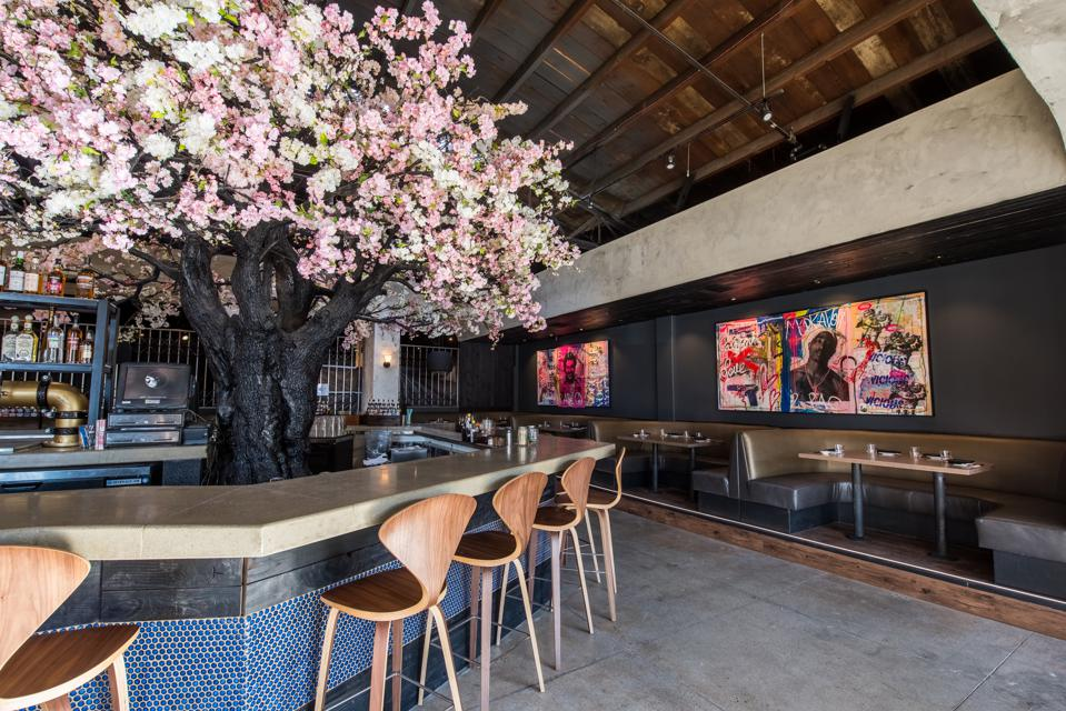 Sakura tree in the bar at Cloak and Petal.