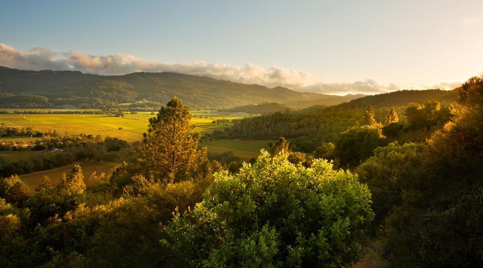 Calistoga Ranch Napa Valley hiking trail view