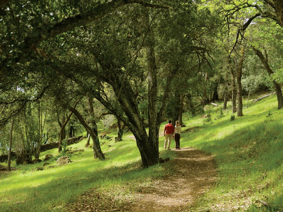 Calistoga Ranch Napa Valley hiking trail