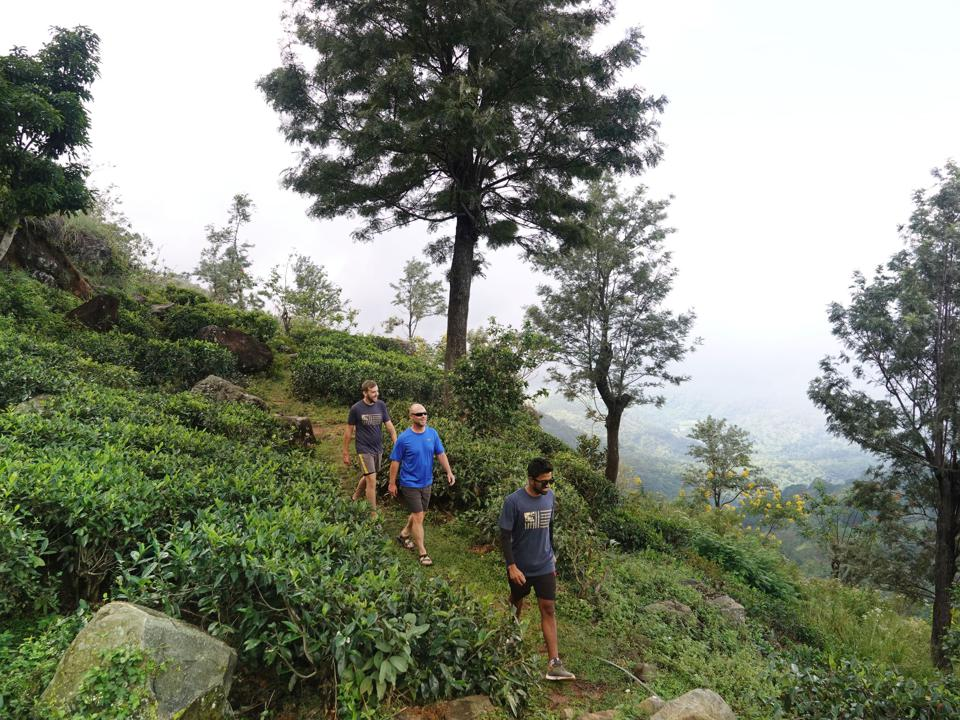 Hiking in Sri Lanka.