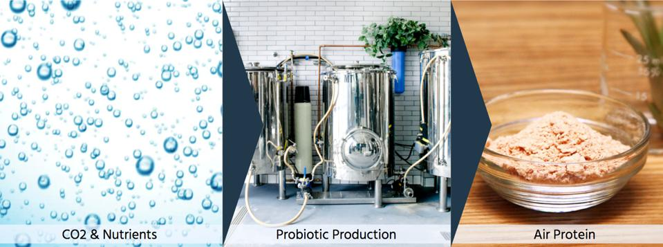 Air protein production