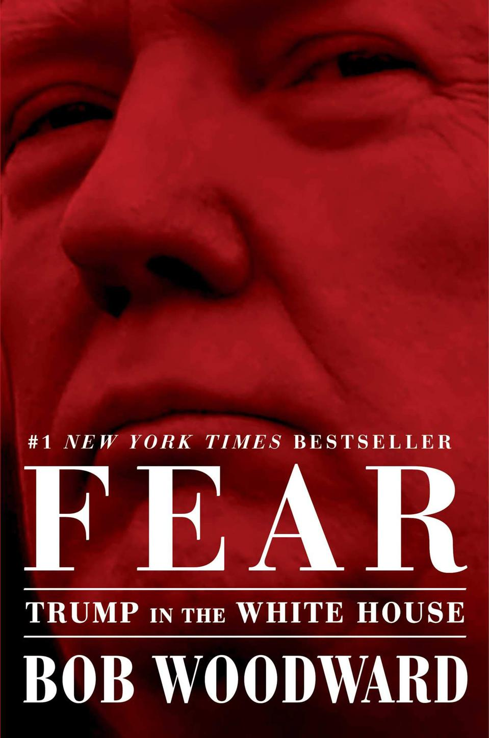 Fear Trump in the Whitehouse