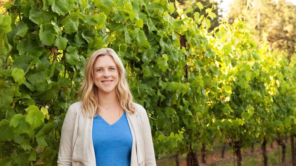vineyards, wine tasting, work in wine, wine jobs
