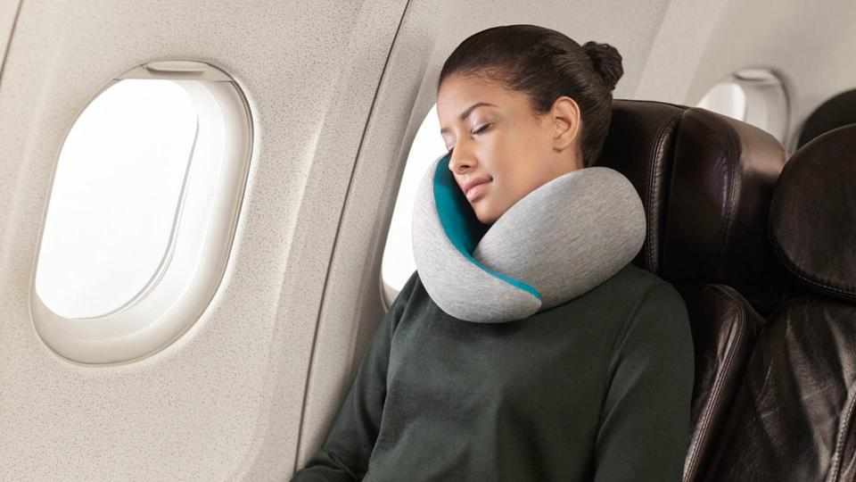 ostrich-go-pillow