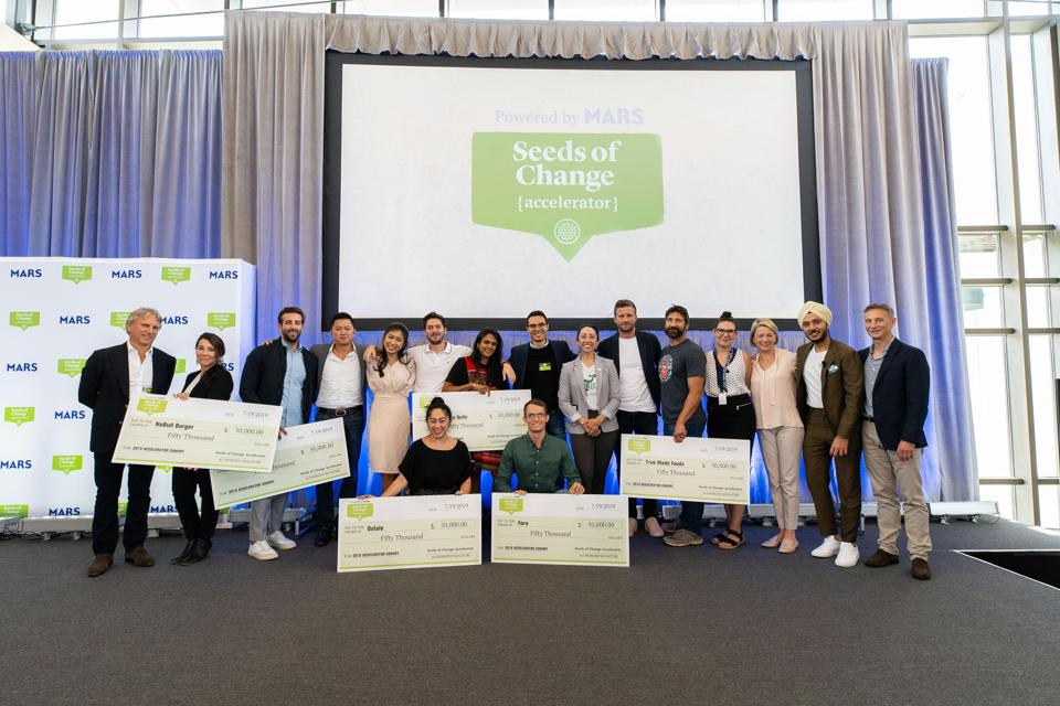 Seeds of Change accelerator winners at the final selection event.