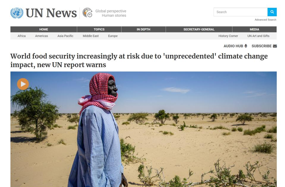 Screen shot of UN webiste on food security report 8-2019