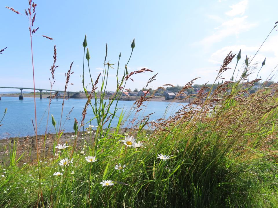 View of Lubec, Maine from Campobello Island