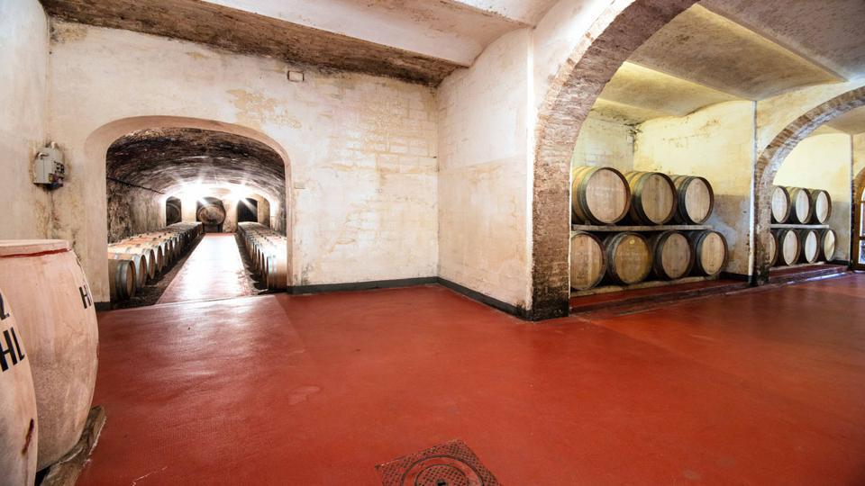 Ghizzano Cellars