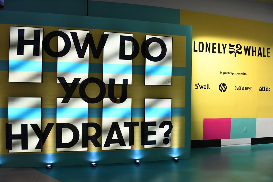 entrance to Lonely Whale's Museum of Plastic, bold lettering against a backlit wall that says ″How Do You Hydrate?″