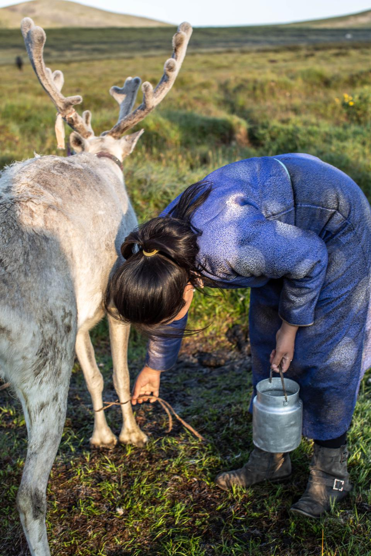 Tsaatan Tribe, Northern Mongolia
