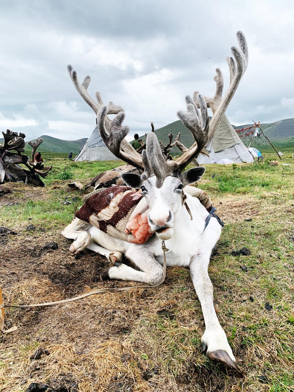 Khovsgol Province, Mongolia