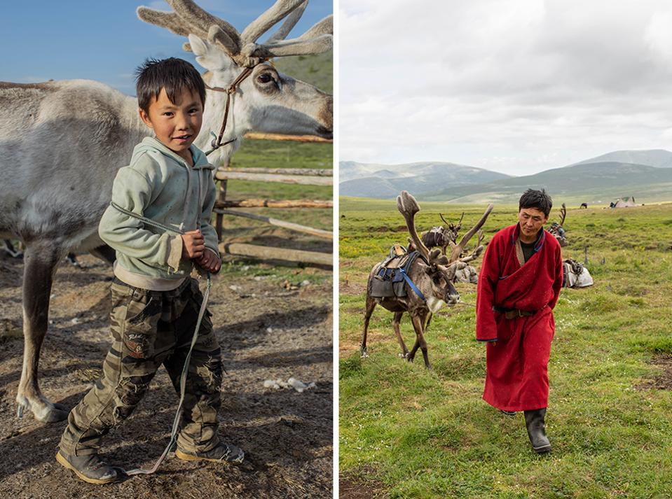 Reindeer Herders, Northern Mongolia