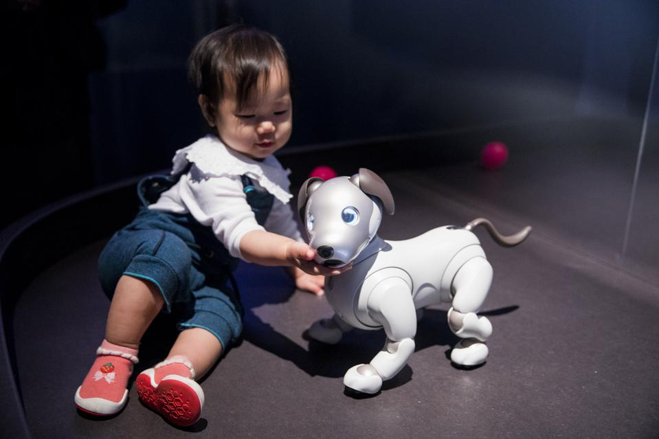AI: More than Human, Barbican Centre – 16 May-26 August 2019. aibo © Sony Corporation. Credit: Tristan Fewings/Getty Images.