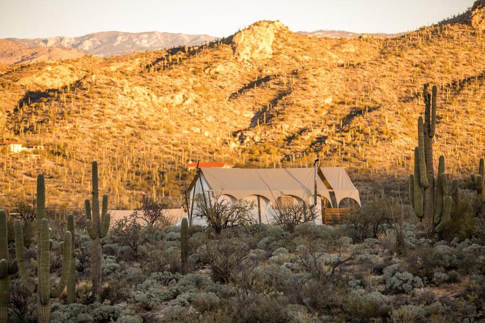 Under Canvas Tucson Tanque Verde